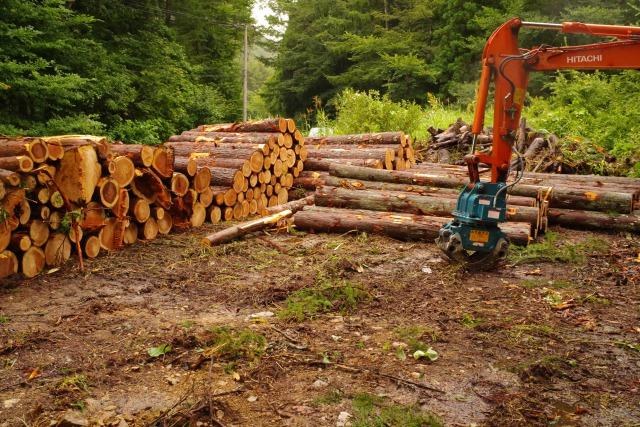 中央需給情報連絡協議会で原木不足緩和見通しも 長期安定取引重要に