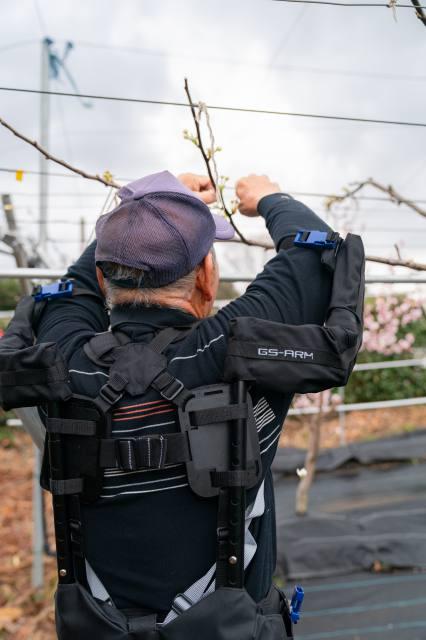 果樹園の働き方改革 腕上げ用アシストスーツ