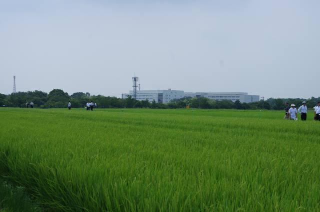 災害に強い国土を 農村政策等検討会が提言 ~農水省~