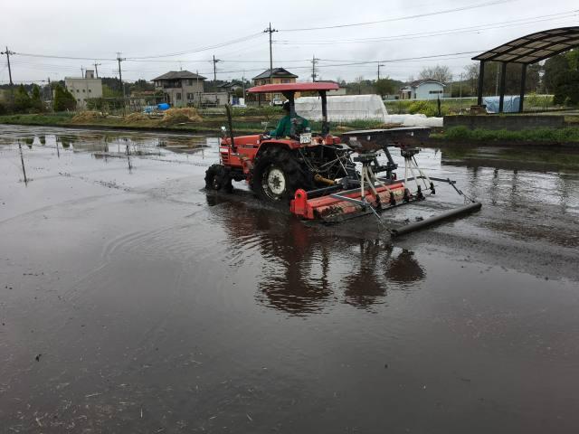 技術向上と普及拡大へ 東北農研が無コ湛水直播フォーラム