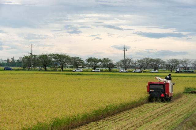 米どころ新潟×園芸産地長野 統計に見る信越農業 就農しやすい長野 儲かる農業目指す新潟