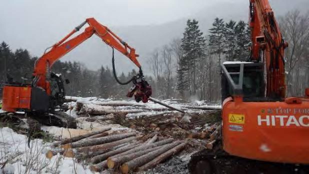 スマート林業を全国へ データ活用で効率化 作業労務削減等を達成