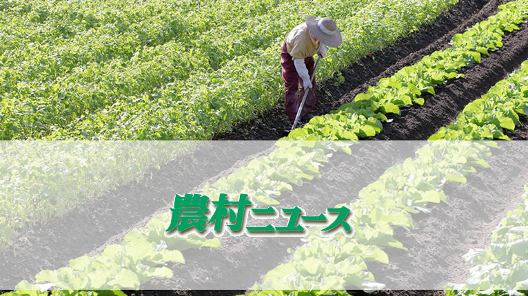 【特別寄稿】食の安全を科学で検証する ‐17- =東京大学名誉教授、食の安全・安心財団理事長 唐木英明=